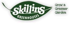 skillins